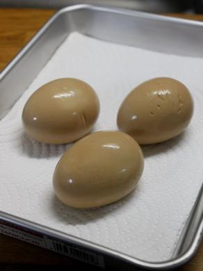 egg20100207-001