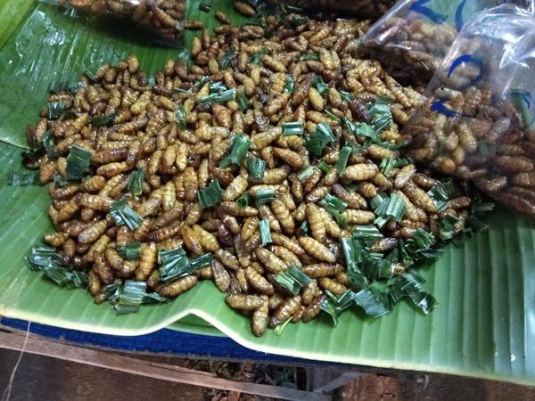昆虫色モスラ焼き