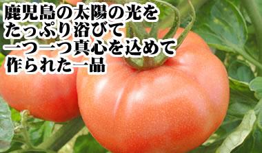 kaneuji11