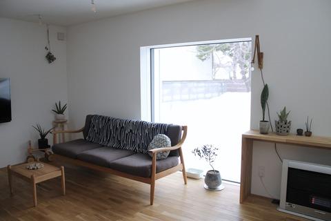 リビングと植物、以前のマンションと今の家では...