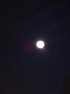 2012-08-31 20:44:25 写真1
