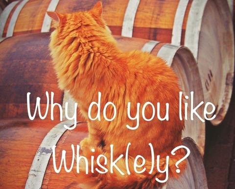 ウイスキー写真作品展企画のためのクラウドファンディング ~Why do you like whisk(e)y?~