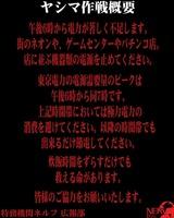 2011y03m12d_210007796