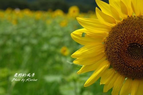 東徳久06