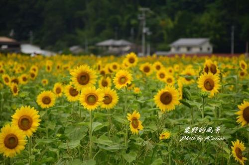 東徳久04