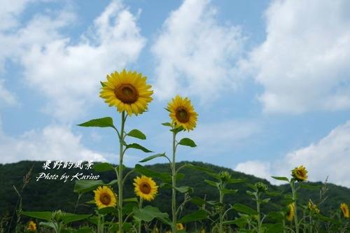 東徳久07