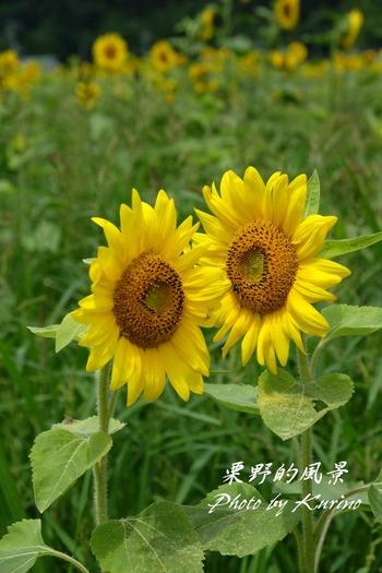 東徳久09