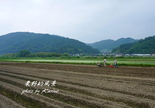 農作業01