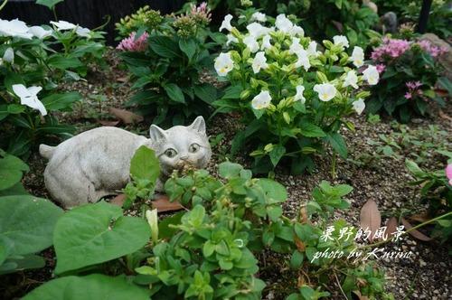 花と小動物02
