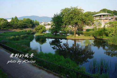 野間大池公園01