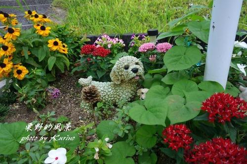 花と小動物01
