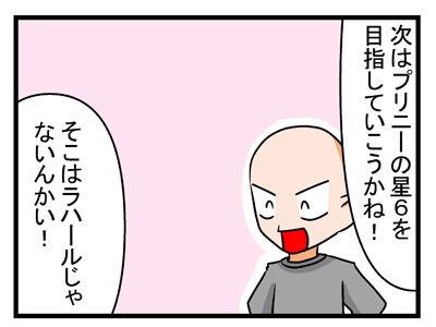 プリニー 鏡餅