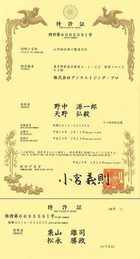 yamaimo-patent