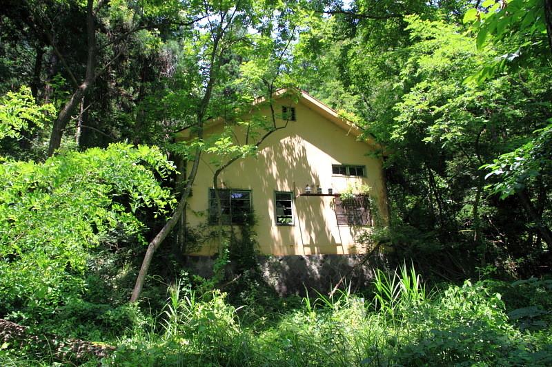 森の中の崩壊発電所  くろべぇの廃墟
