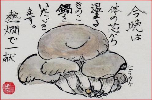絵手紙ヒラタケ