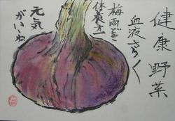 1絵手紙たまねぎ2010 06 18 003