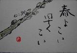 6−ねこ柳.JPG