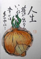 1 -絵手紙たまねぎ.JPG