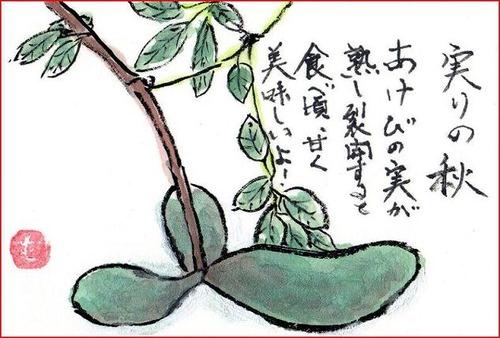 1絵手紙あけびiキャプチャ