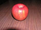 4−リンゴ素材.JPG