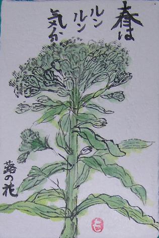 1-絵手紙蕗の花2010 04 12 001