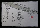 5-絵手紙ねこやなぎー.jpg