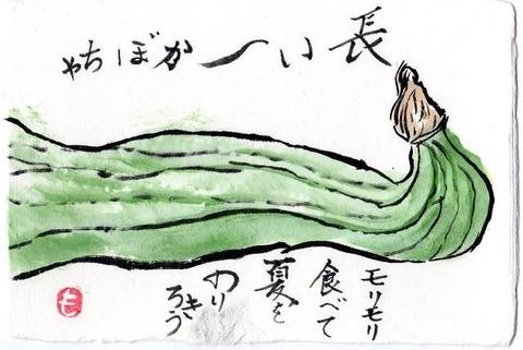 1-絵手紙・スクナカボチャimg051