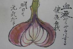 2-絵手紙玉ネギ2010 06 18 004