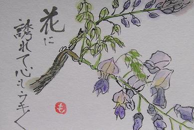 1-絵手紙・藤