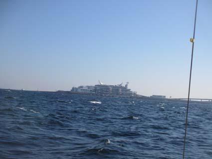 281015海ホタルIMG_1181