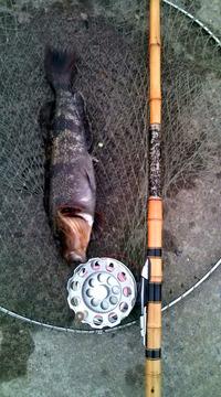 3鮎魚女20110422175330