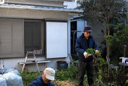 201114枝下ろし3DSC_7174