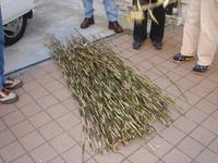 すず竹総量