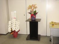 201102花