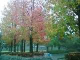 公園にて01