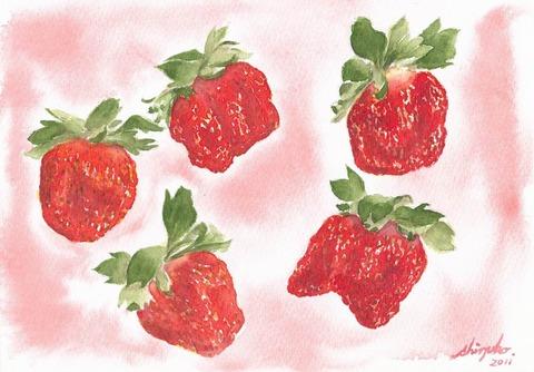 透明水彩画『苺』を描きました♪