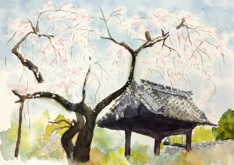 25Kさん透明水彩画「桜の風景(仮題)」