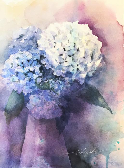 梅雨の終わりに滑り込みセーフで紫陽花を描く