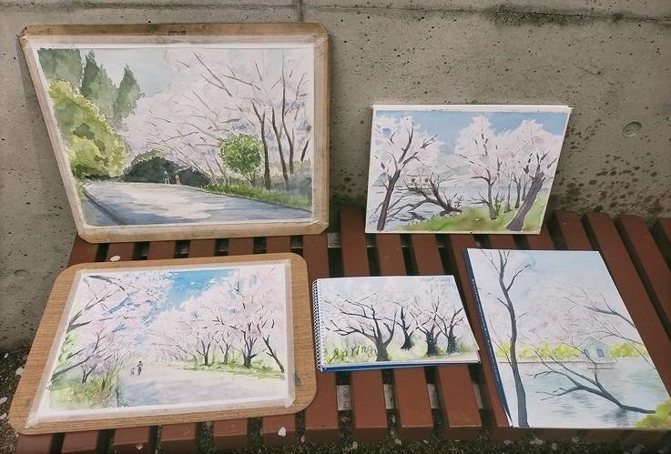 🌸桜が見頃のスケッチ日和🌸3.30山田池公園スケッチ会の様子🌸🌸