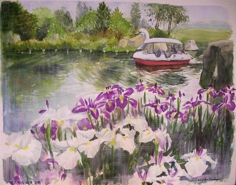 菖蒲の咲く水辺 透明水彩画「国立明石海峡公園」を描きました♪ 製作過程もアップ!