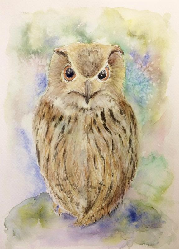 バックを塩の技法で描いたOYMさん透明水彩画「フクロウ」…が動き出す?!