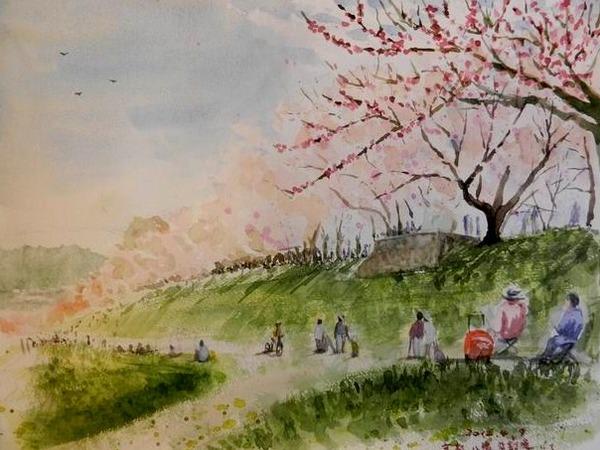 昨日に引き続き『八幡の背割堤』桜スケッチ ♪ と 本の紹介