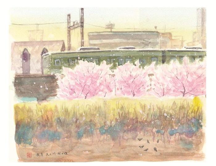 2013.04.08透明水彩スケッチ『枚方 天の川 桜の頃』