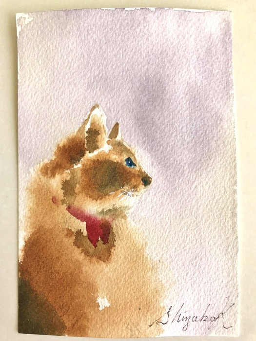 葉書de一日一枚 私も「滲みで猫」を描いてみた(一匹目)