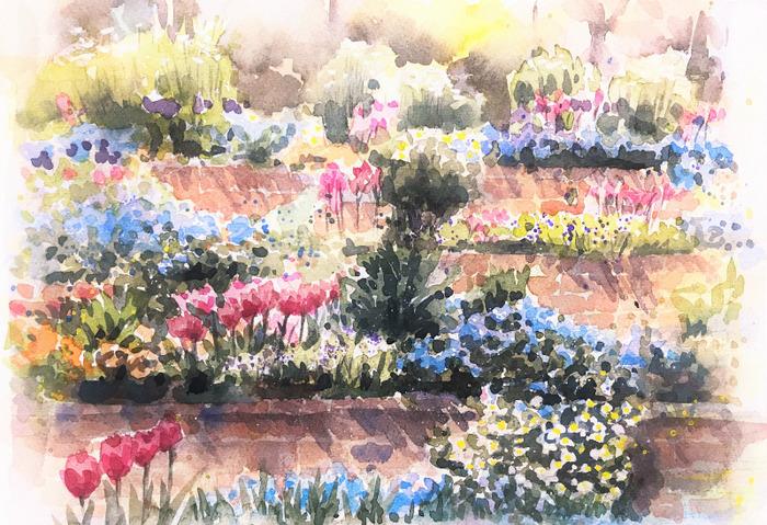 透明水彩画「春の花壇」