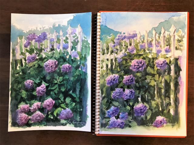 苦手な…細かくて沢山「紫陽花」続編。そして次は紅葉だ!