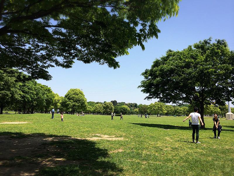 GW写真特集 鶴見緑地公園の「咲くやこの花館」
