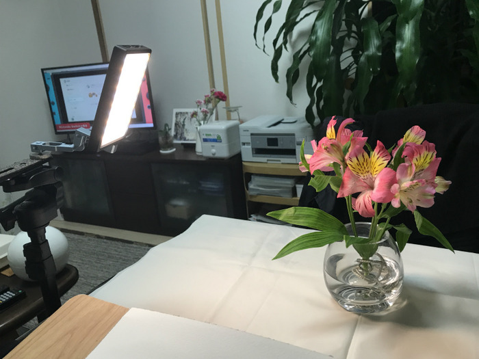 【花の絵】動画撮影用のLEDライトでライティング