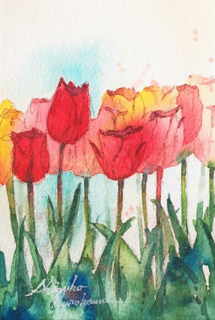 透明水彩小品「チューリップ」&「今年の目標と憧れの画家」