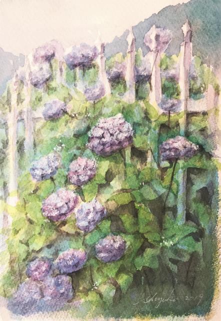 苦手な…細かくて沢山「紫陽花」その1普通に描く